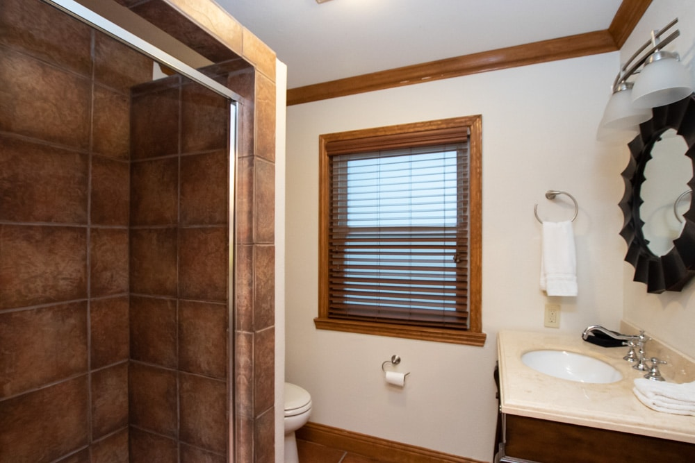 Bathroom with brown tile shower